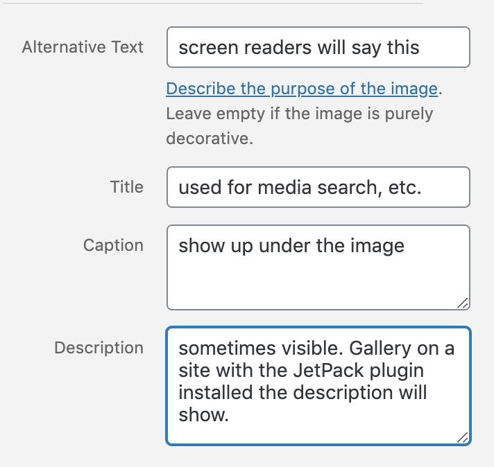 caption details fields - alternative text, title, caption, and description